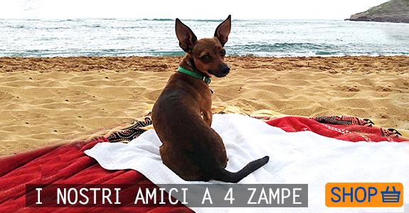 PER I NOSTRI AMICI A 4 ZAMPE